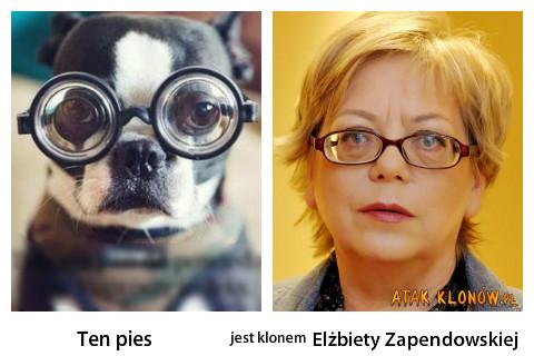 Ten pies i... – Ten pies Elżbiety Zapendowskiej