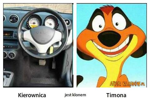 Kierownica i... – Kierownica Timon