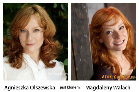 Agnieszka Olszewska i... –