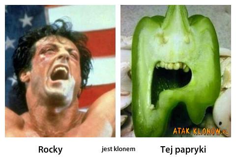 Rocky i... –