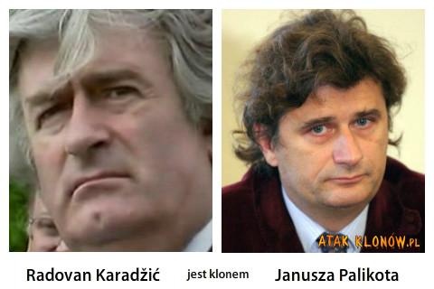Radovan Karadžić i... –