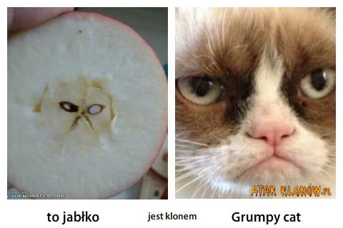 To jabłko i... –